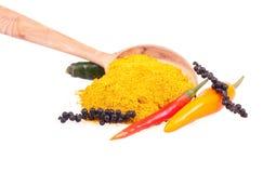 De peper en de kruiden van de Spaanse peper royalty-vrije stock foto's
