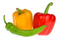 De peper van de klok en van de Spaanse peper Royalty-vrije Stock Foto