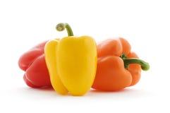 De peper van de paprika Stock Fotografie