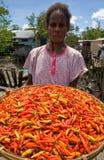 De peper van de Papuanvrouw in de traditionele markt wordt verkocht die Royalty-vrije Stock Foto