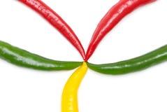 De peper van de Spaanse peper Royalty-vrije Stock Afbeelding