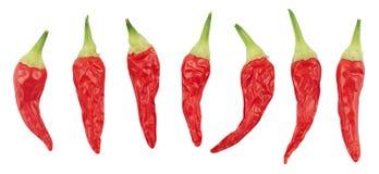 De peper van de Spaanse peper Stock Fotografie