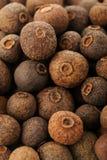 De peper van Jamaïca van de pimentbespeper Royalty-vrije Stock Foto