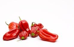 De peper van Jolokia bhut Stock Afbeelding