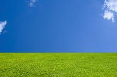 De perfecte Achtergrond van het Gras en van de Hemel Stock Afbeeldingen