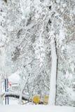 De perfecte Dag van de Winter Royalty-vrije Stock Foto