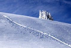 De perfecte winter Royalty-vrije Stock Afbeeldingen