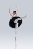 De perfectie van het ballet stock afbeeldingen