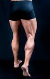 De perfekta male benen royaltyfri foto