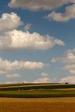 De periode van de de recente zomeroogst met grote witte wolken Royalty-vrije Stock Afbeelding