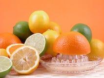 De pers van de citrusvrucht Stock Afbeeldingen