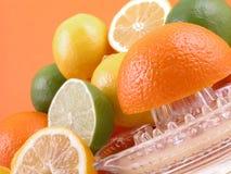 De pers van de citrusvrucht Stock Foto
