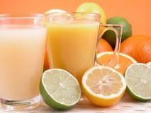 De pers van de citrusvrucht Royalty-vrije Stock Afbeelding