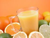 De pers van de citrusvrucht Royalty-vrije Stock Foto's