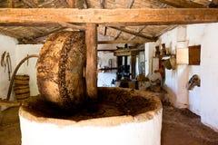 De Pers van de olijf stock afbeeldingen