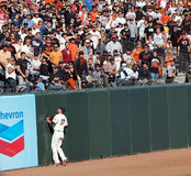 De persen van Huff van Aubrey in muur aangezien homerun wordt geraakt Stock Foto