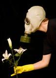 De persoon in een gasmasker ruikt een bloem Royalty-vrije Stock Afbeeldingen