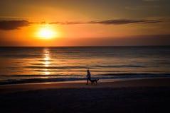 De persoon loopt een hond tegen een zonsondergangstrand dat wordt gesilhouetteerd Royalty-vrije Stock Afbeeldingen