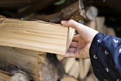 De persoon trekt van brandhout van de stapel stock foto