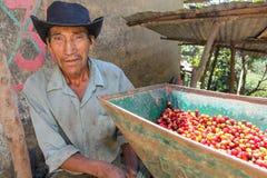 De Peruviaanse mens stelt in werking Stock Foto's