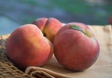 De perziken van de zomer Royalty-vrije Stock Afbeelding