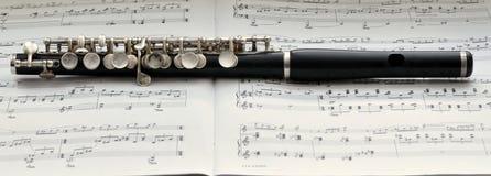 De petite flûte image libre de droits