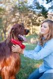 De petting hond van de vrouw Royalty-vrije Stock Foto