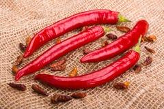 De peulen van roodgloeiende peper en Spaanse peperpeperoncini op juteachtergrond Stock Fotografie