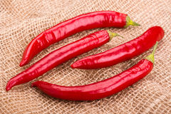 De peulen van roodgloeiende peper op een juteachtergrond Stock Foto