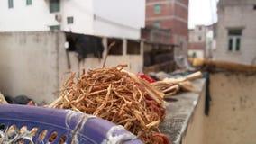 De peulvruchten? maken koken gemakkelijk Stock Fotografie