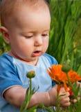 De peuter bekijkt bloem royalty-vrije stock afbeeldingen