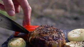 De picknick, smakelijke succulente biefstuk braadde op vuur op hete steen met kruid en groenten in rookclose-up bij stock videobeelden