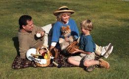 De picknick van de familie Royalty-vrije Stock Afbeelding