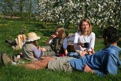 De picknick van de familie Stock Foto's