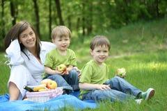 De picknick van de familie Stock Afbeeldingen
