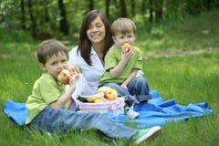 De picknick van de familie Stock Afbeelding