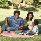De picknick van de familie. Stock Afbeeldingen
