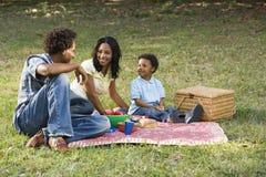 De picknick van de familie in park. royalty-vrije stock afbeeldingen