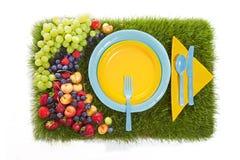 De Picknick van de fruitzomer Stock Fotografie