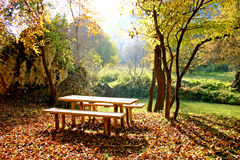 De picknick van de herfst in de aard Stock Afbeeldingen