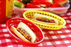 De Picknick van de hotdog stock foto
