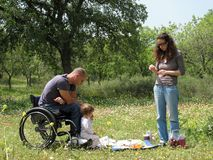 De Picknick van de rolstoel Royalty-vrije Stock Foto