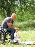 De Picknick van de rolstoel Stock Afbeeldingen