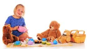 De Picknick van de teddybeer Stock Afbeeldingen