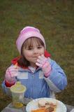 De Picknick van de winter Stock Fotografie