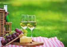 De picknick van de zomer Royalty-vrije Stock Foto's