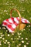 De picknick van de zomer Royalty-vrije Stock Foto
