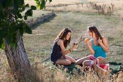 De picknick van de zomer Royalty-vrije Stock Afbeelding