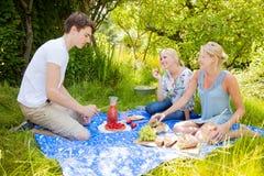 De picknick van de zomer Stock Foto