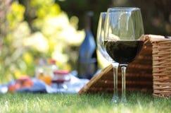 De picknick van de zomer het plaatsen Stock Fotografie
